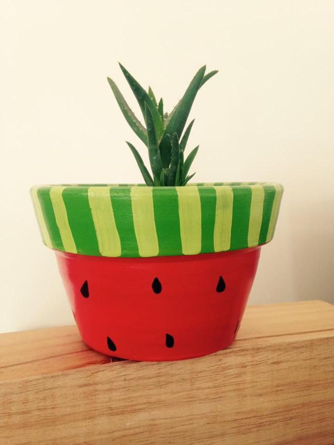 Cactus De Spring - Portal Luna de Miel