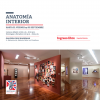 Anatomía Interior
