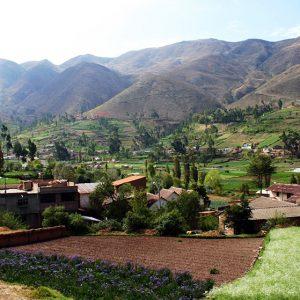 Escápate a Chanchamayo, un paraíso selvático a 7 horas de Lima