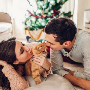 Primera Navidad juntos (y solos)